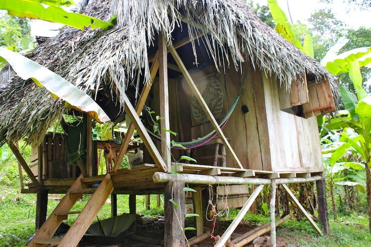 Hallie's Hut