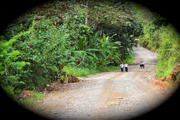 Village children on jungle road