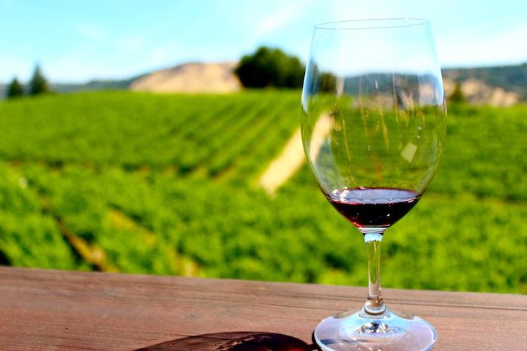 Wine and view of beautiful El Dorado wine valley