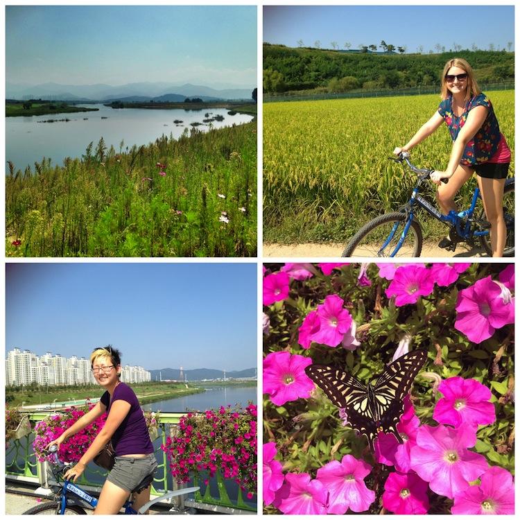 Biking by the river in Daegu