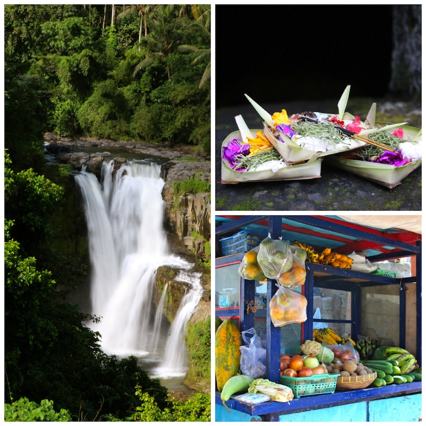 Scenes from Bali; a waterfall, flowers, fruit