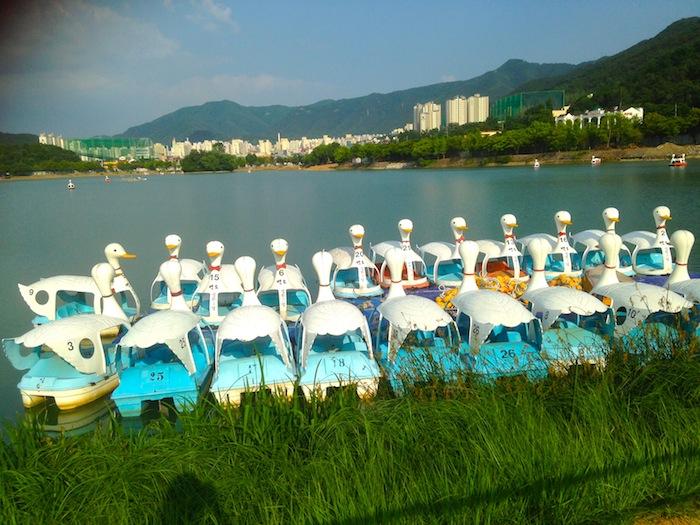 Suseong Lake, Daegu