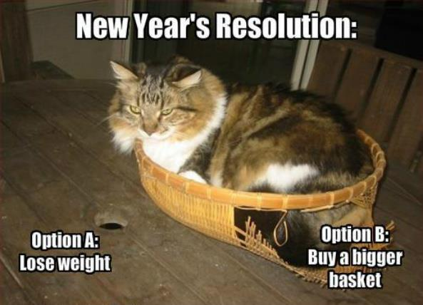 New Years Resolution Cat Meme