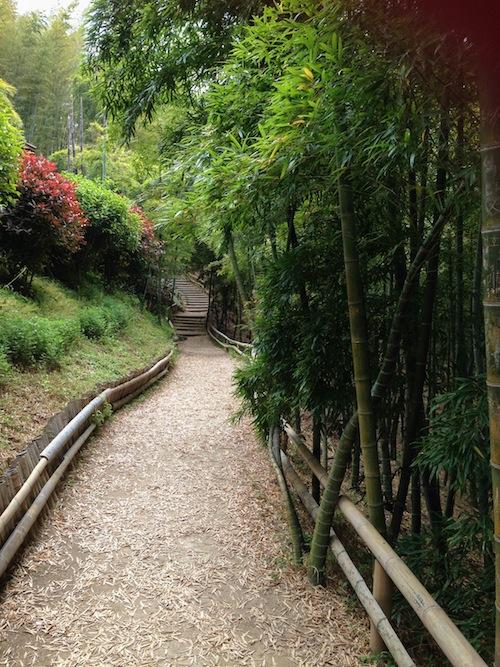 Bamboo Theme Park Goeje Island Korea