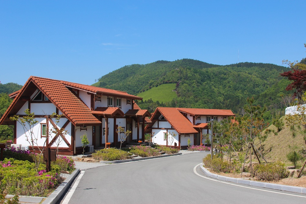 Nokcha Resort at Boseong Tea Fields