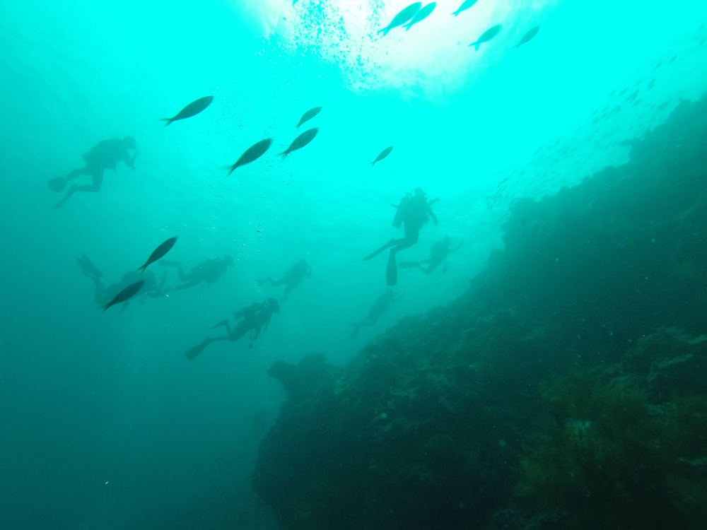 Scuba Diving in Sipadan Borneo