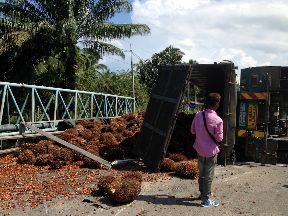 Overturned fruit truck in Borneo