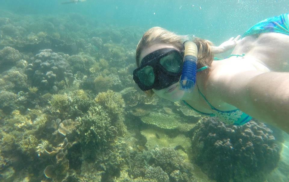 Snorkeling Sapi Island Kota Kinabalu Borneo