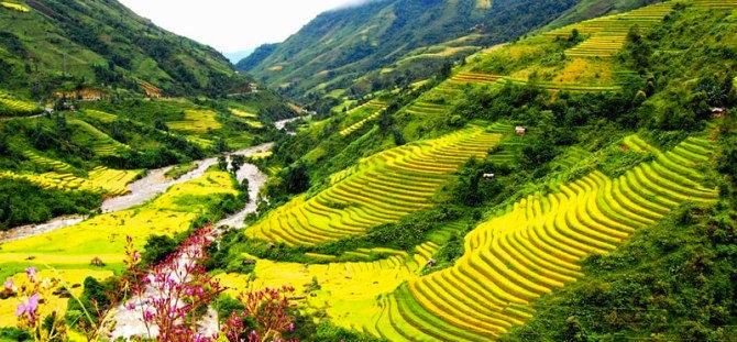 Charming-Highland-Vietnam