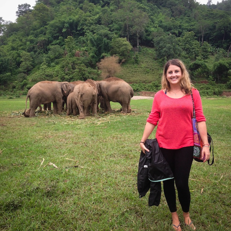 volunteer at Elephant Nature Park