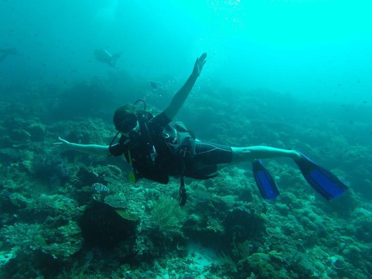 diving in Komodo