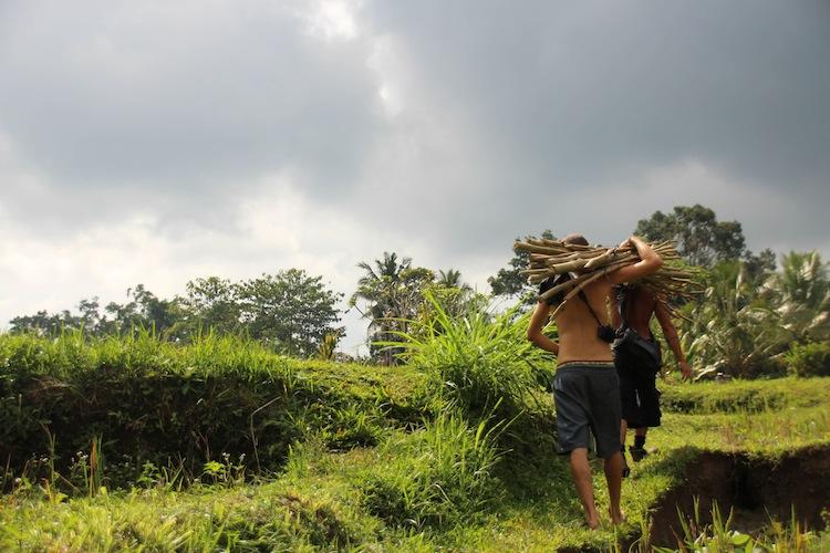 volunteer project in Ubud