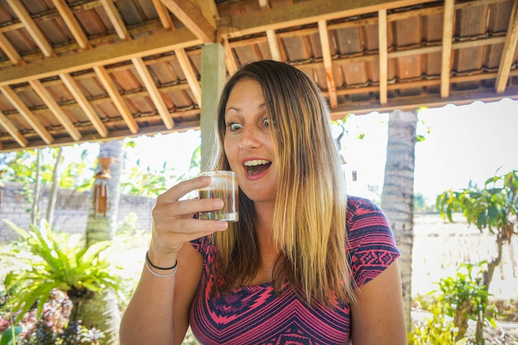 Bali's poop coffee Kopi Luwak