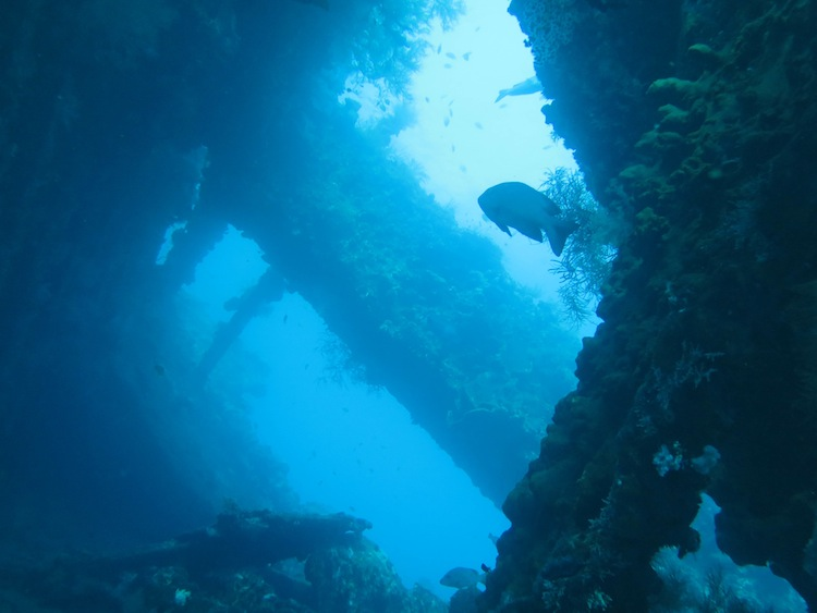 diving shipwreck at Tulamben