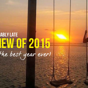review of 2015