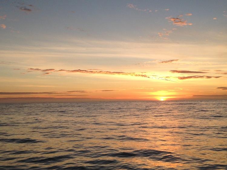 New Zealand sunrise Kaikoura